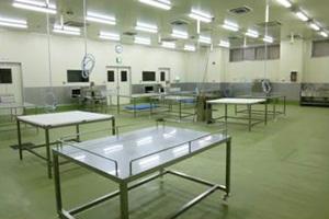 潮見町工場鮮魚処理室