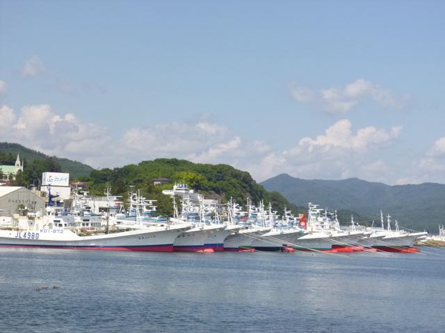気仙沼港 船